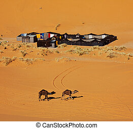 Camp in desert - The bedouins camp in  Sahara, Morocco
