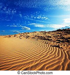 Desert - Sand desert