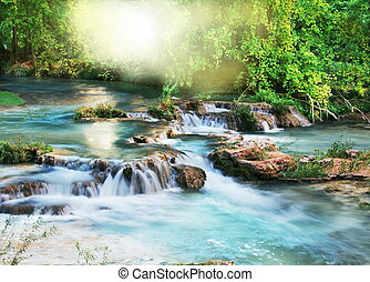 Creek - river in tropical forest
