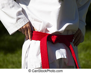 Tae Kwon Do - 2012 J. W. Kim Tae Kwon Do school belt test in...