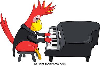 divertido, pianista, loro