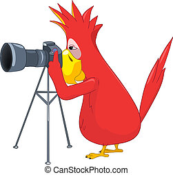 Funny Parrot. Photographer. - Cartoon Character Funny Parrot...