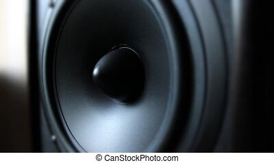 Acoustic system speaker
