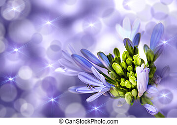 Flower on a purple background. Abstract Composition.