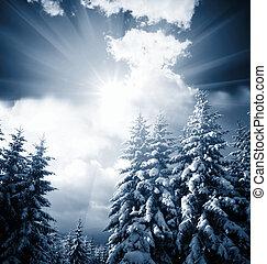 Frozen trees - frozen trees