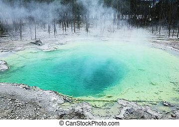 Geyser - geyser in Yellowstone