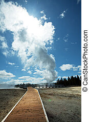 Geyser - geyser in Yellowstone