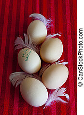 Chicken eggs - seasonal view - Chicken eggs for happy easter...