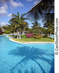 Tropical resort in Mexico - Swimming pool at luxury hotel in...