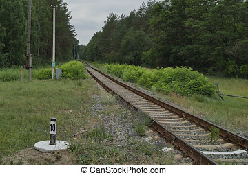 Secondary railroad line in forest, Ukraine