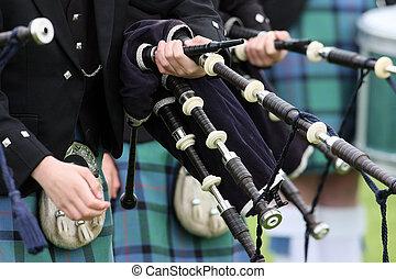 escocés, tubo, banda