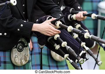 tubo, banda, escocés