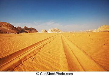 camino, desierto