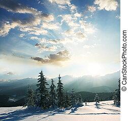 Winter scene - Winter sunset