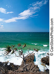 Noosa Beach - Queendsland - Australia blue sky, clear day, a...