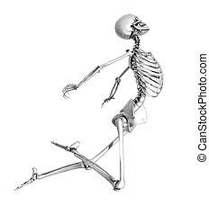 skelett, hoppa, -, blyertspenna, teckning, stil