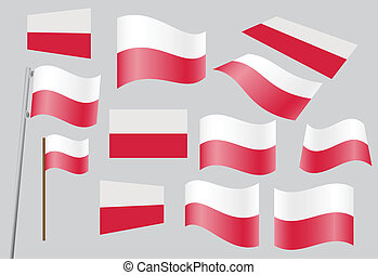 Polish flag - set of Polish flags vector illustration