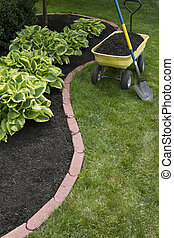 Mulching Around Hostas - Mulching bed around hostas and...