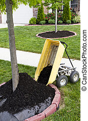 Neighborhood Beautification - Neighborhood beautification...