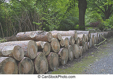 Logged Out - Stacked logs framing a woodland walk way