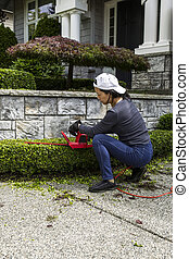 Yard Work at Home - Woman trimming hedges with electric...