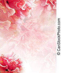 background - Nice background with hibiscus flowers