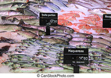 trouts, mackarels and goatfish on fish market - trout,...