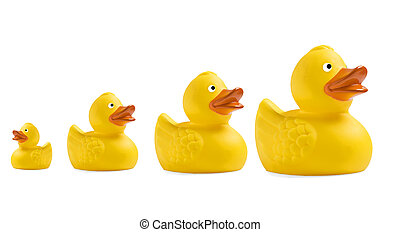 Yellow toy duckling on white background - Yellow toy...