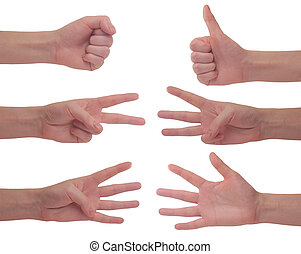 Hands - Counting Hands from one to five