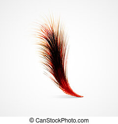 Red feather on a white background. Realistic vector