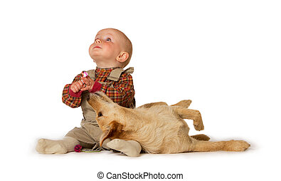 Young baby playing with a dog