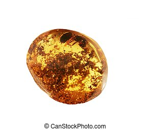 Amber - Ancient amber