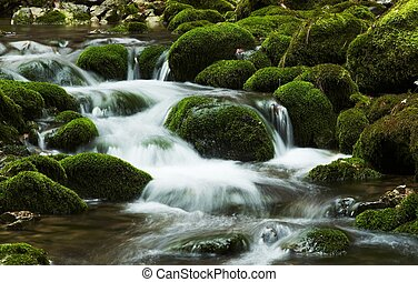 Beautiful waterfall - Beautiful small waterfull in green...