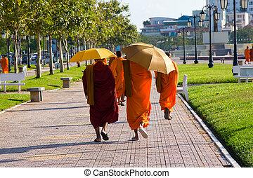 camboyano, monjes, ambulante, calle, Phnom, penh