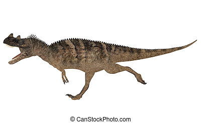 Ceratosaurus - Illustration of a Ceratosaurus dinosaur...