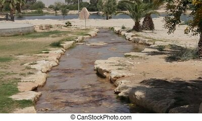 Oasis in the Negev Desert - Artificially created an oasis in...