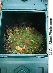Open composter bin with rest of plants and vegetables for...