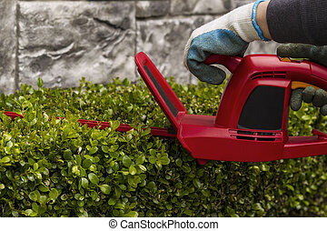Power Hedger Trimming Hedges - Hands holding power hedger...