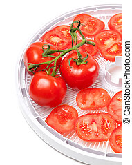 Fresh tomato on food dehydrator tray Isolated on white...