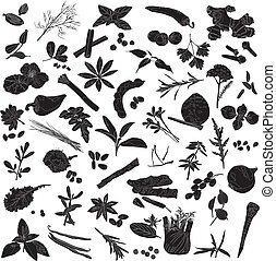 silhouettes of many spices - Silhouettes a number of...