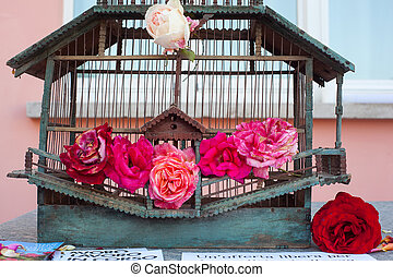 Roses inside the bird cage - Red Roses inside the old bird...