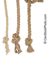 ship ropes with knot on white - ship ropes with knot...