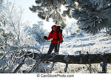 Happiness men in the frozen forest - Men in the beautiful...
