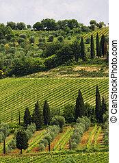 Tuscany images - Tuscany landscape