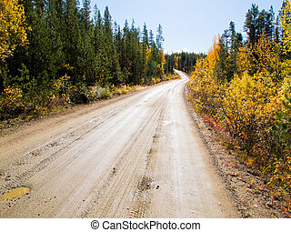 Fall rain on rural dirt road in forest wilderness