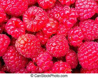 Juicy ripe raspberries background texture pattern - Tasty...