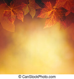 Autumn leaf - Autumn design background with colorful red and...