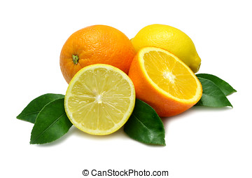 Oranges and Lemons - Orange and Lemon, halved and whole,...
