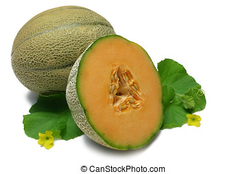 Cantaloupe - Whole and halved Cantaloupe, with leaves and...