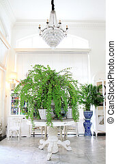 luxury interior in living room with green plants